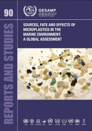 Sources, fate and effects of microplastics in the marine